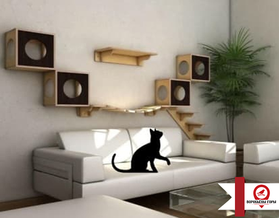 Интерьер однокомнатной квартиры с животными