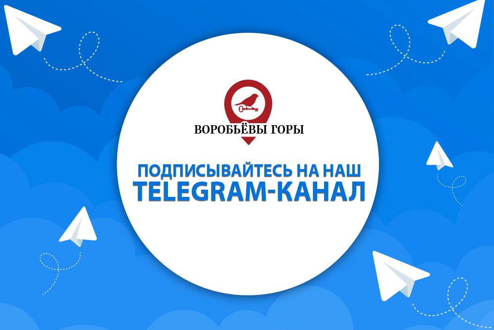 """Компания """"Воробьевы Горы"""" создала свой Telegram-канал"""